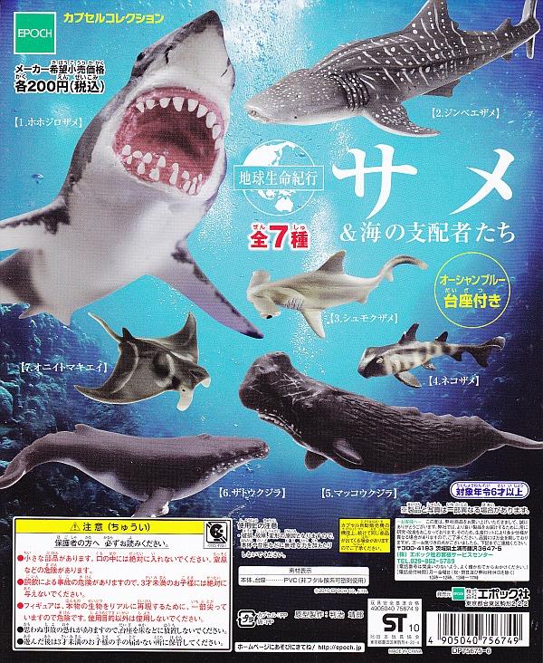 ■地球生命紀行 サメ&海の支配者たち■7種