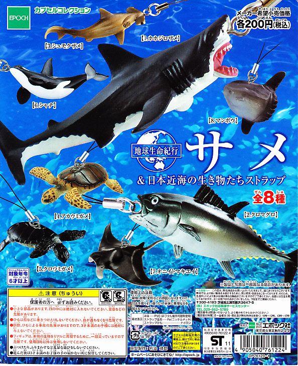 ■海洋ストラップシリーズ サメ&日本近海の生き物■7種