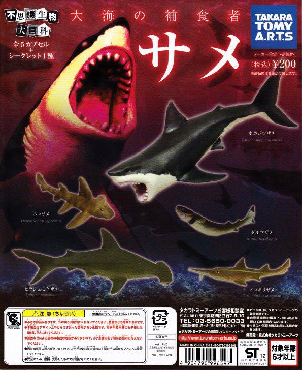 ■不思議生物大百科大海の捕食者サメ■ノーマル4種+1個重複※