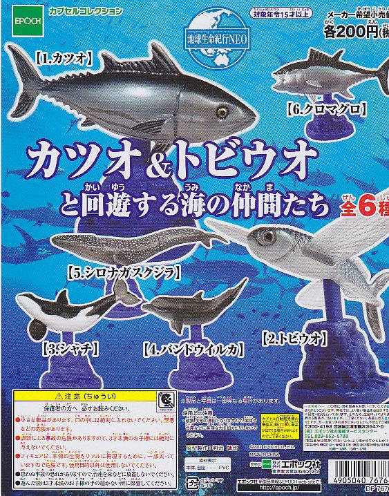 ■地球生命紀行NEOカツオ&トビウオと回遊する海の仲間たち■5種+重複1個※