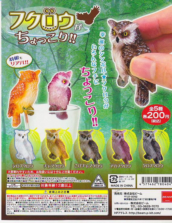■フクロウがちょっこり!■全5種