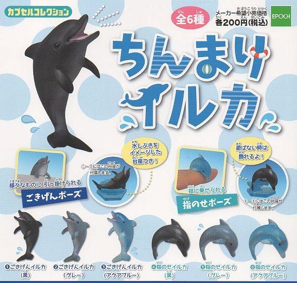 ◆ちんまりイルカ◆全6種