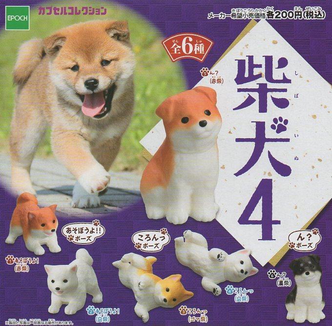 ◎柴犬4◎6種