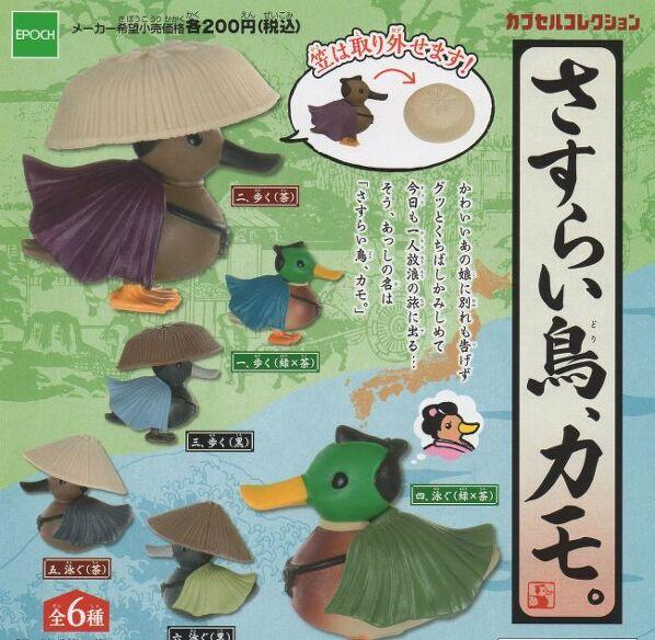 ■さすらい鳥、カモ■6種