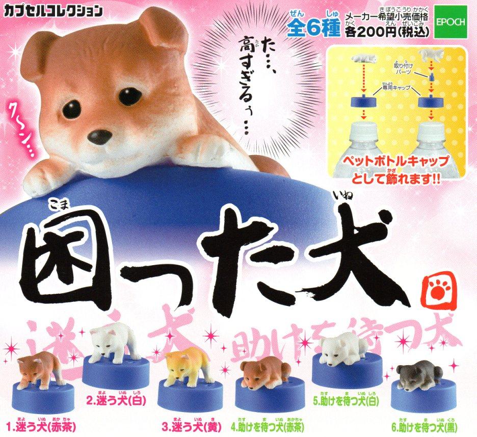 ■困った犬■6種