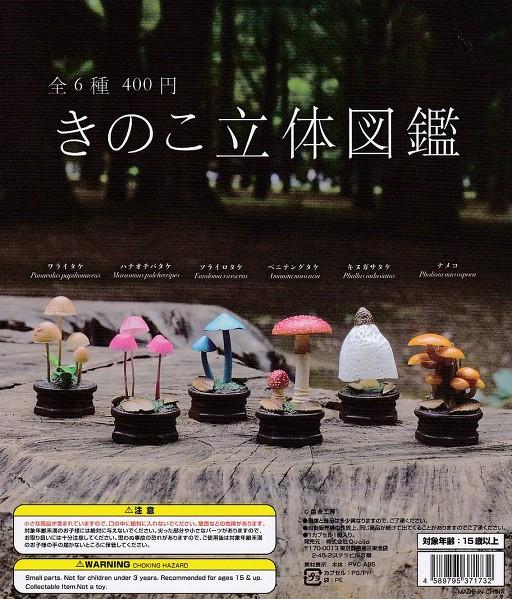 ■きのこ立体図鑑■全6種セット