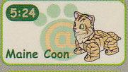 キューブリックバウブリック2■単品 Maine Coon