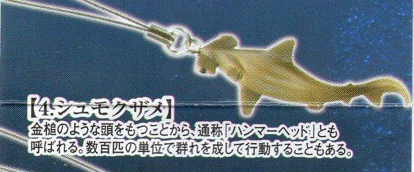 ■地球生命紀行 マグロ&シーラカンス■単品 シュモクザメ