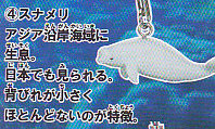 甲殻類と海の仲間タチストラップ■単品 スナメリ