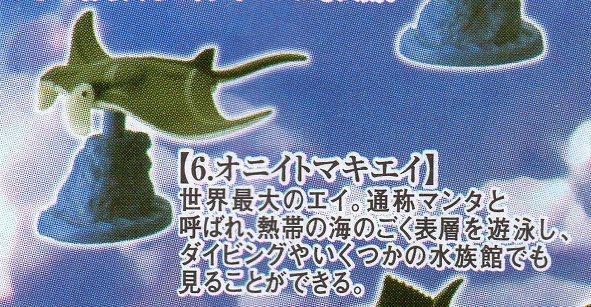 タラバガニ&日本近海の魚たち■単品 オニイトマキエイ