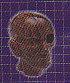 ◇人体模型■単品 ノーマルカラー頭部構造模型
