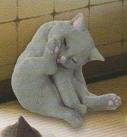◎猫の毛づくろい◎灰猫