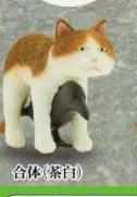 ◎◎〜なかよし動物シリーズ〜 猫とカラス◎茶白猫+カラス合体